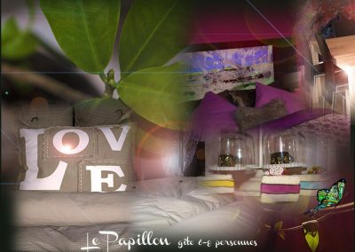 gite-papillon01